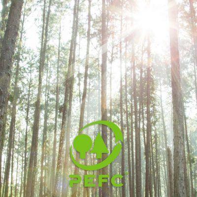 I prodotti con certificazione PEFC di CMC COMPANY